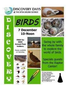 birds_discoveryday