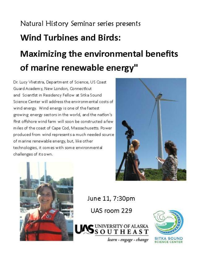 wind_turbine.pub