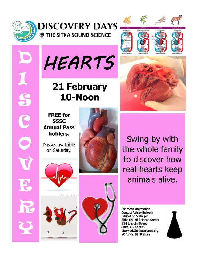 hearts_discoveryday2015
