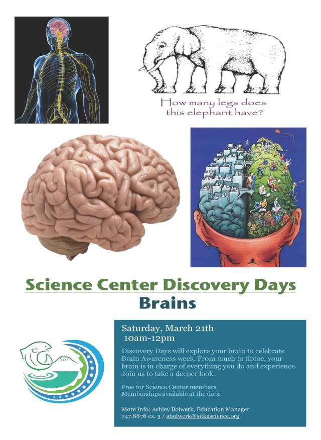 DiscoveryDay_Brains