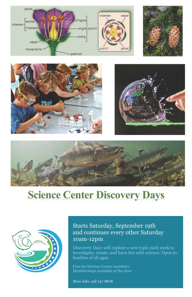 Discovery Days Flyer 2015