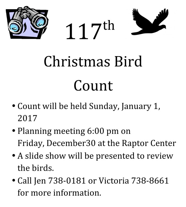 Microsoft Word - Xmas Bird Count Poster.docx