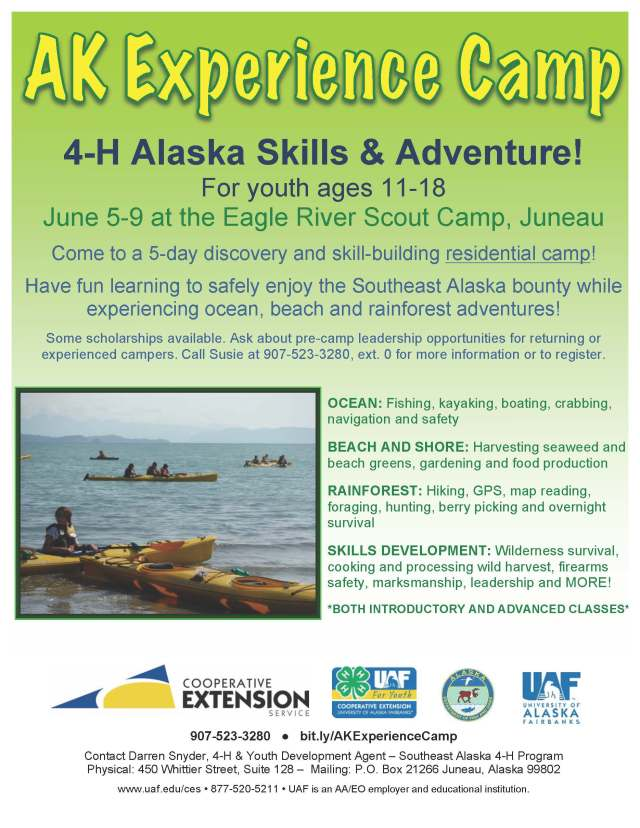 ak-experience-camp-2017-flyer